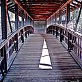 Liberty Bridge Swan Lake by Jeff McJunkin