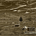 Liberty Cemetery I Sepia-toned by Brenton Cooper