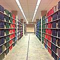 Library Daze IIi by Hannah Rose