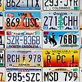 Licence Plates by Sophie Vigneault