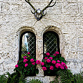 Lichtenstein Castle Windows Wall And Antlers - Germany by Gary Whitton