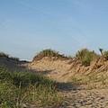 Lieutenant Island Dunes by Barbara McDevitt