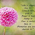 Life Is Short by Trish Tritz