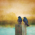 Life Long Friends - Days End by Beve Brown-Clark Photography