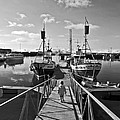 Life On The Docks by Solvi Breidfjord