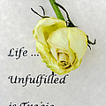 Life Unfulfilled Is Tragic by Rhonda McDougall