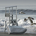 Lifeguard Station With Flying Gulls At A Lake Huron Beach by Randall Nyhof
