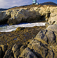 Lifeguard Tower On The Edge Of A Cliff by David Millenheft