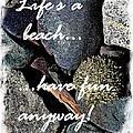Lifes A Beach by Barbara Griffin