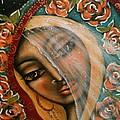 Lifting The Veil by Maya Telford