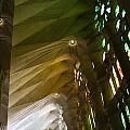 Light And Color Of The Sagrada Familia by Lorraine Devon Wilke