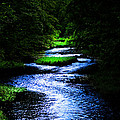 Light In The Creek by Randall Branham