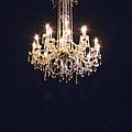 Light In The Dark by Margie Hurwich
