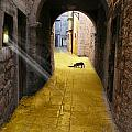 Light In The Tunnel by Angelika Drake