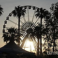 Ferris Wheel by Chris Tarpening