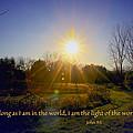 Light Of The World by Debbie Nobile