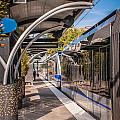 Light Rail Train System In Downtown Charlotte Nc by Alex Grichenko