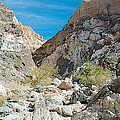 Light Side And Dark Side In Big Painted Canyon In Mecca Hills-ca by Ruth Hager