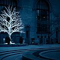 Light Snow by Christine Hess