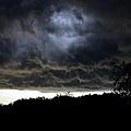 Light Through The Storm by David Lee Thompson