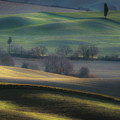 Light Transition by Marek Boguszak