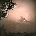 Light by HweeYen Ong