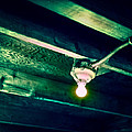 Lightbulb And Cobwebs by YoPedro