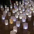 Lighted Lantern Bags by Sally Weigand