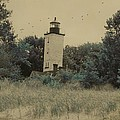 Erie Lighthouse Among The Trees by Gothicrow Images