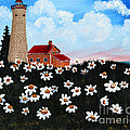 Lighthouse And Daisies by Barbara Griffin