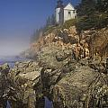 Lighthouse At Bass Harbor Maine by Randall Nyhof