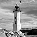 Lighthouse Black And White by Barbara McDevitt