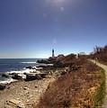Lighthouse Path by Joann Vitali