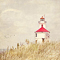 Lighthouse With Red Roof by Pam  Holdsworth