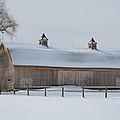 Lightly Browned Barn  7k00040b by Guy Whiteley