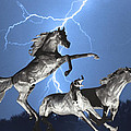 Lightning At Horse World Bw Color Print by James BO Insogna