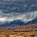 Lightning Strike by Cat Connor