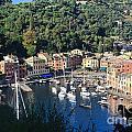 Liguria - Portofino by Antonio Scarpi
