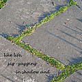 Like Life by Ann Horn