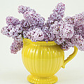 Lilac Boquet - Yellow Vase by Keith Webber Jr