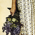 Lilac Bouquet by Margie Hurwich