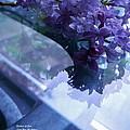 Lilac Glass by Barbara St Jean