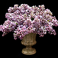 Lilacs In A Green Vase - Flowers - Spring Bouquet by Andee Design