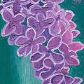 Lilacs by Nikolette Galenza