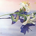 Lilies At Rest by Patricia Novack
