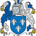 Lillie Coat Of Arms Irish by Heraldry