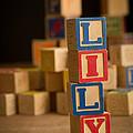 Lily - Alphabet Blocks by Edward Fielding