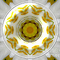 Lily And Daffodil Kaleidoscope Under Glass by Rose Santuci-Sofranko