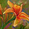 Lily by Liesbeth Verboven