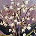 Lily Of The Valley by Florinel Nicolai Deciu
